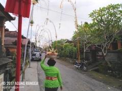 jalan desa yang dihiasi penjor